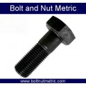 Black oxide hex head bolt